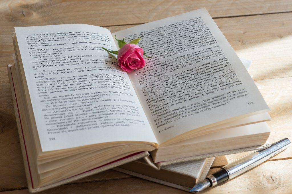 Aufgeschlagenes Buch, auf dem eine rote Rose liegt.