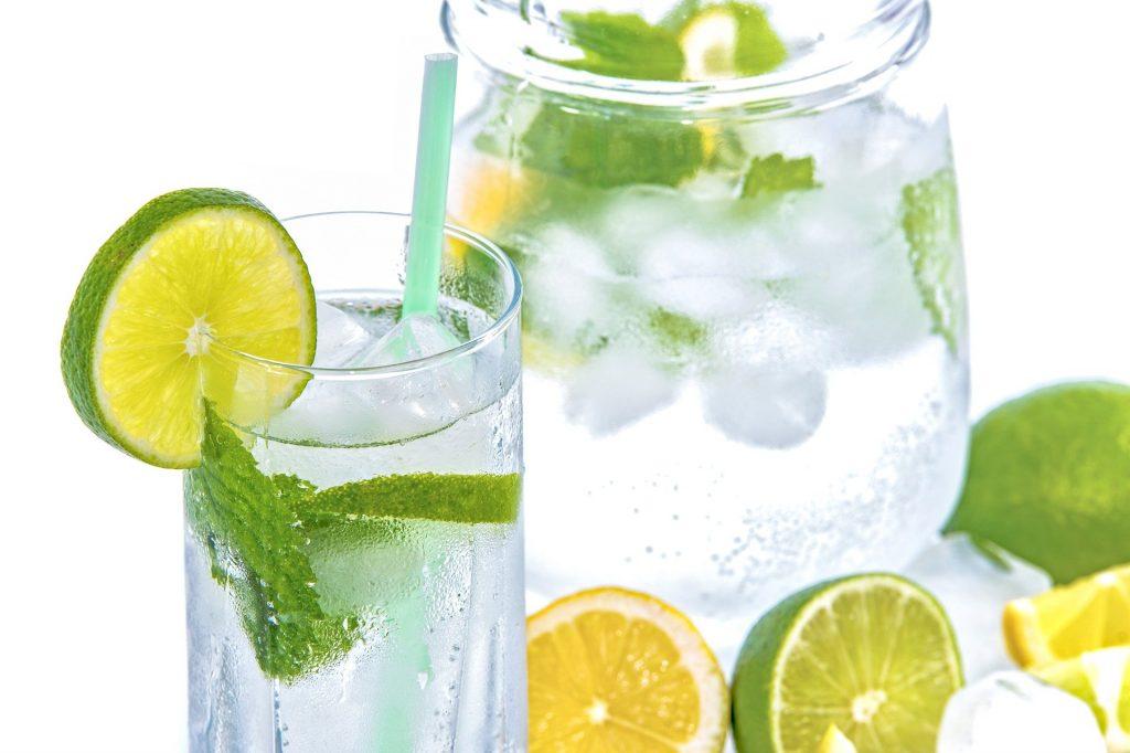 Wassergläaser mit Eiswürfeln, Minze, Limetten- und Zitronenscheiben